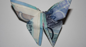 ostia blog main image: butterfly made from bank note